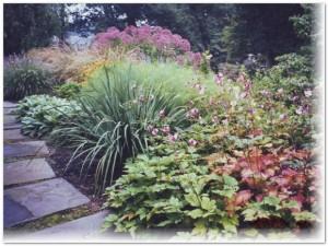 perennial-garden-aardweg-landscaping-swarthmore-kennett-square-PA