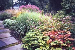 Perennial-garden-aardweg-landscaping-Main-Line-Pennsylvania