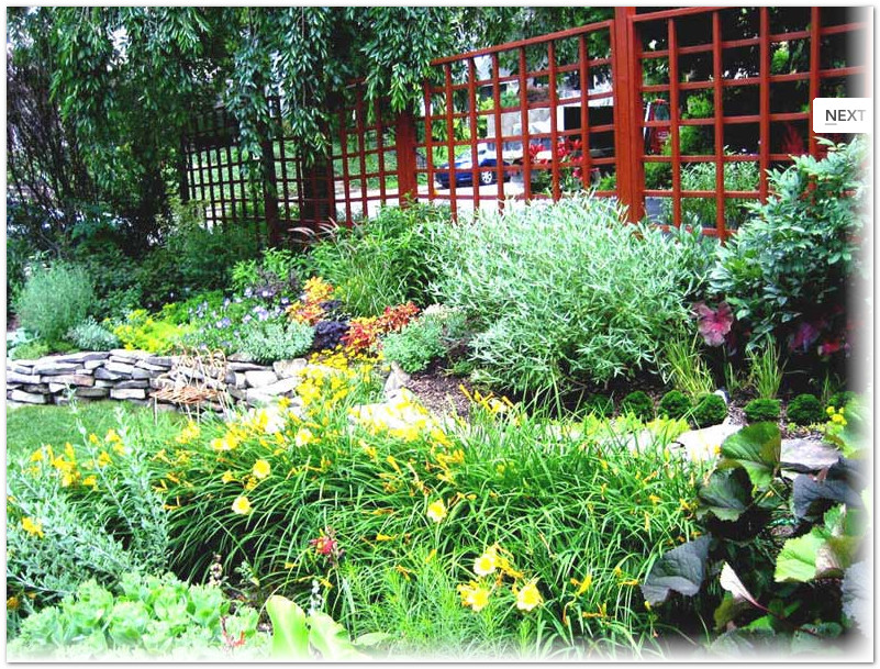 Rock Gardens Suit Small And Large Garden Areas