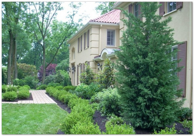 Landscaping design on the main line for Formal front garden ideas