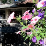 Main Line Philadelphia's Beautiful Flagstone Walks, Patios, and Stairs