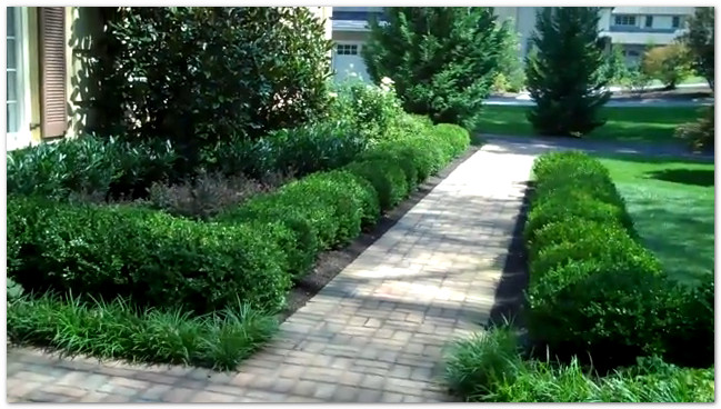 Aardweg landscaping main line formal garden landscaping for Formal landscape design