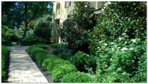 Aardweg Landscaping Formal Design