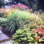 Year-Round Landscape Designs for Main Line Homes