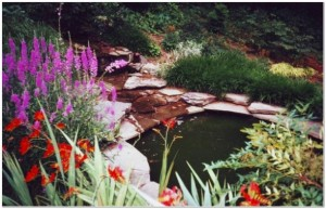 Charming Landscaped Water Feature In Radnor PA By Aardweg Landscaping