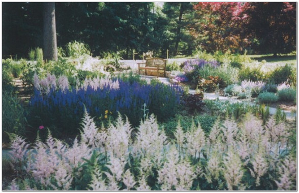 Magical Transformations - Main Line Landscape Design