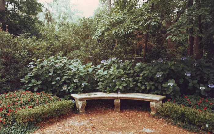 Privacy screening ideas for philadelphia homeowners for Privacy garden designs