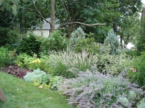 main-line-backyard-designs