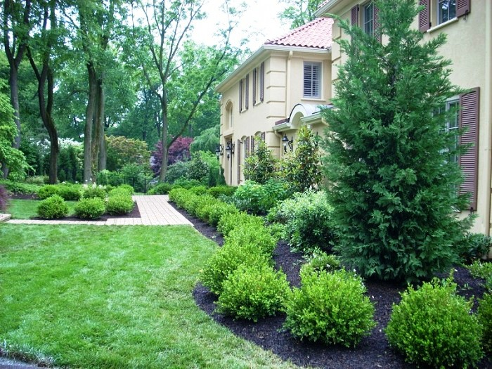 Landscaping Property Lines Pictures : Ideas for landscaping property lines trend home