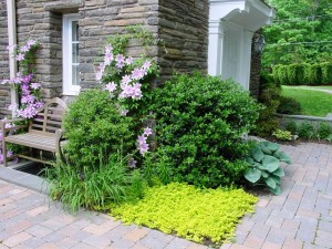 Natural-border-traditional-landscape-philadelphia