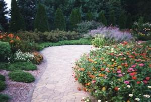 Aardweg-Landscaping-Perennials-Philadelphia-Garden-1