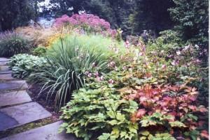 Perennial Garden designed by Aardweg Landscaping, Main Line, PA