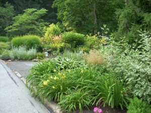 Eye Catching Landscaping Ideas For Main Line Front Yard Gardens