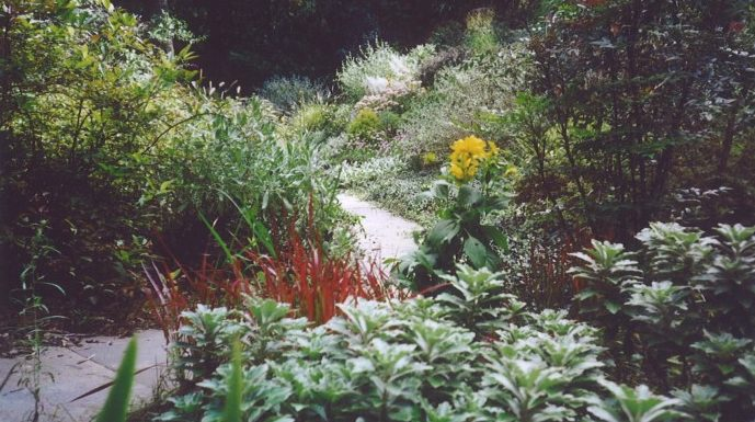 Mixed border landscaping maintenance