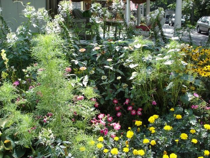 Philly Landscaping: Flower garden