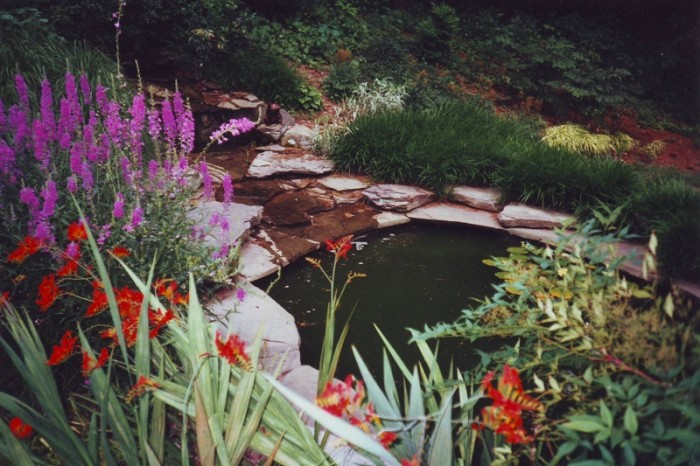 Landscaped water features