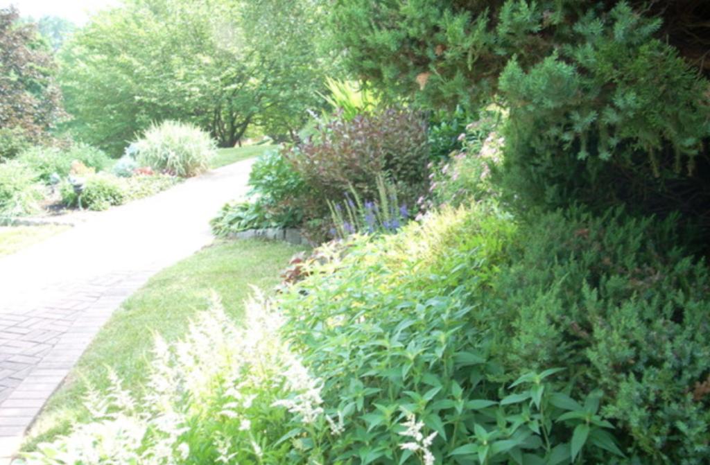 Local garden design services