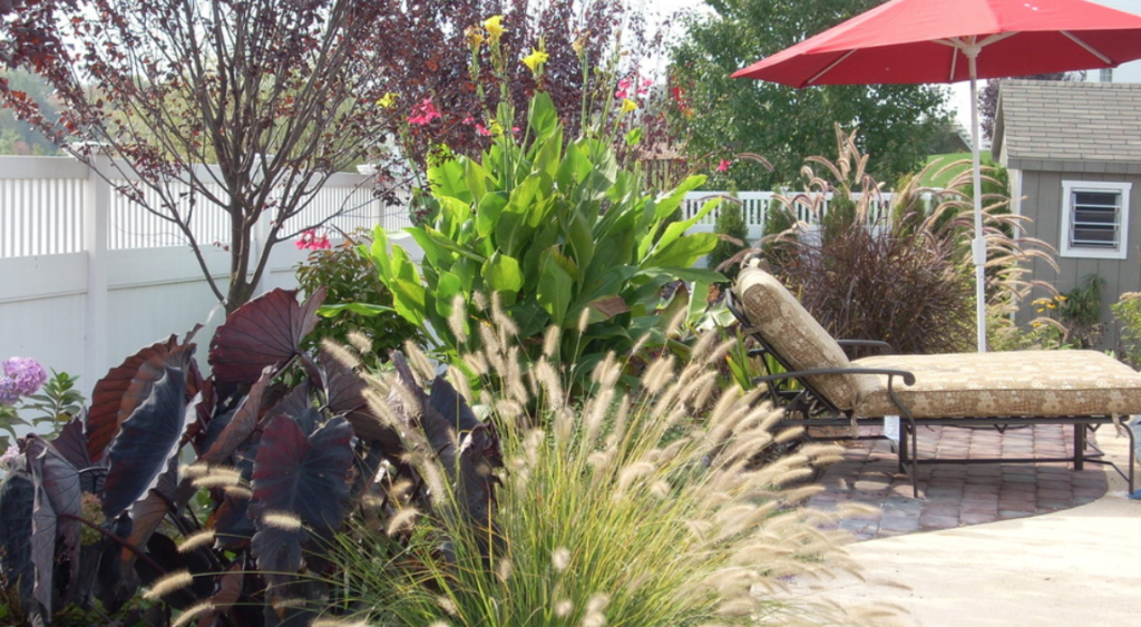 Tropical landscaping installation in suburban Philadelphia